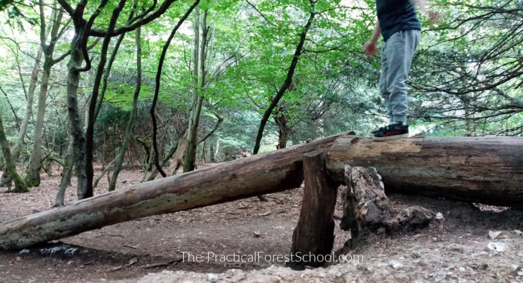 forest school risk assessment