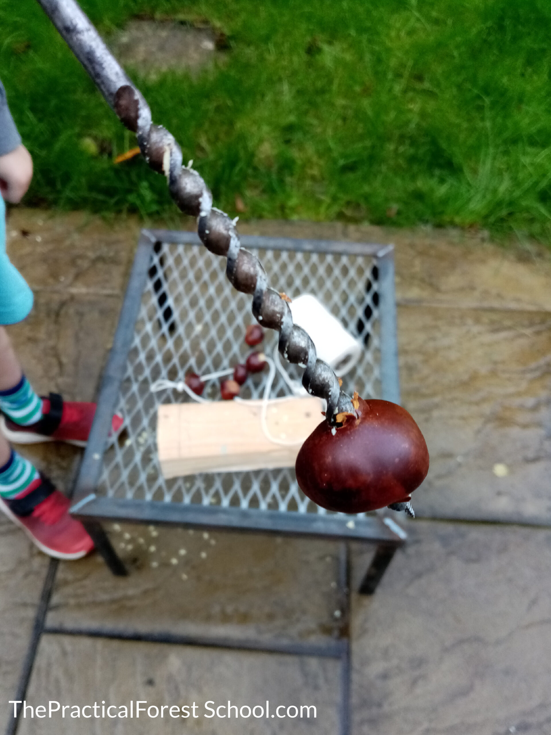 Drilling a hole in a conker